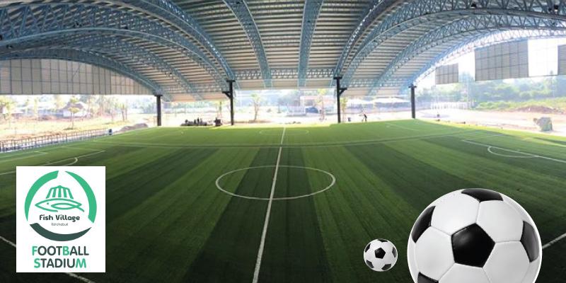 สนามฟุตบอลหญ้าเทียมฟิช วิลเลจ