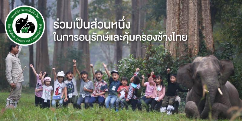 แลกพอยต์รับบุญกับ 3BB เพื่อบริจาคให้กับกองทุนวิจัยและอนุรักษ์ช้างไทย