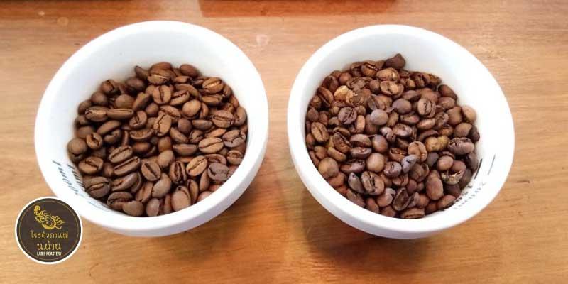 ส่วนลด 10% เมื่อซื้อเมล็ดกาแฟตั้งแต่ 1,000 บาท ขึ้นไป ที่โรงคั่วกาแฟ น.น่าน Lab & Roastery จ.น่าน